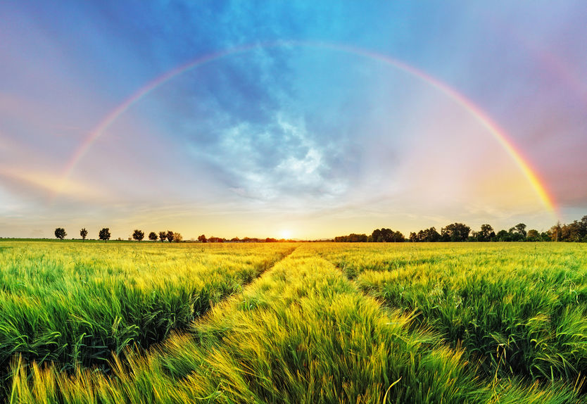 The image of a rainbow over a flourishing field representing balance for Nurturing Balance blog by Kelley Grimes